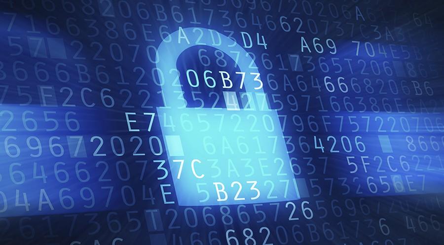 Wzzard IoT Security